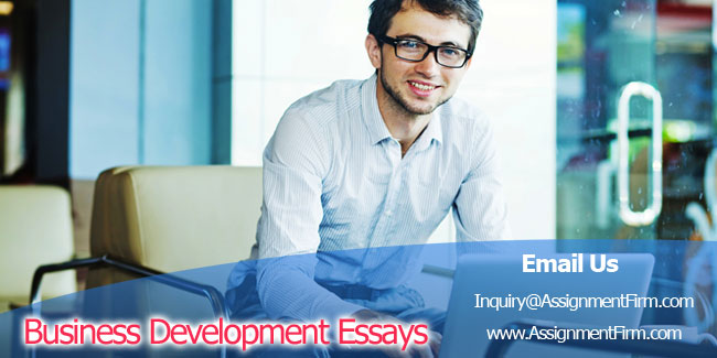 Business Development Essays