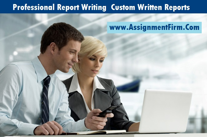 Reports | Custom Report Writing Service - starting at $1 /page