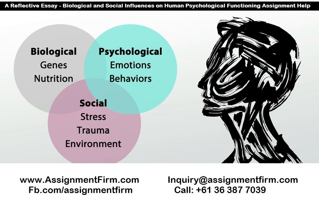 essay human development psychology Human development – essay sample in the works of different researchers, it is claimed that social behavior is not something naturally acquired as a result of aging indeed, children's inadequate behavior usually results from the lack of social and communication skills.