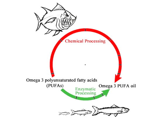 Long-chain polyunsaturated fatty acids: the case for and against the supplementation of infant formula