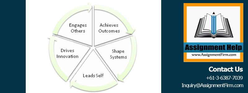Health Leadership Framework