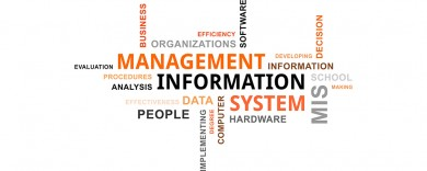 ISY2007 Management Information Systems