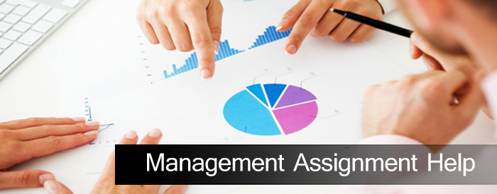 management assignment help
