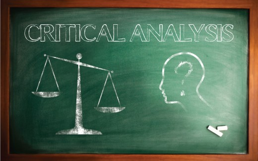 NURS 3001 Instructions Critical Analysis