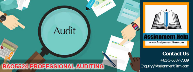 BAO5524 PROFESSIONAL AUDITING