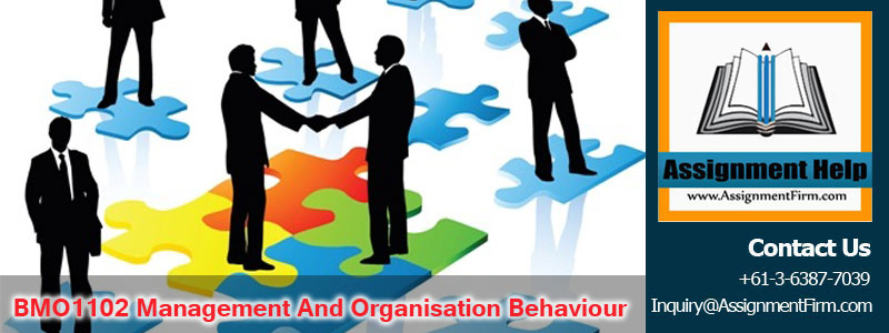 BMO1102 Management And Organisation Behaviour