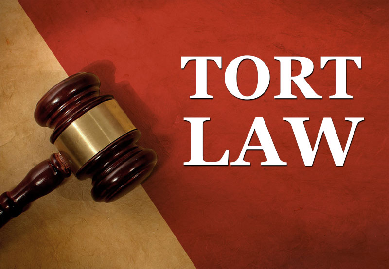 LAW231 Torts Law Rights And Liabilities