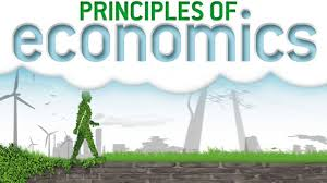 MAE101 Economic Principles