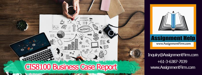 CIS8100 Business Case Report