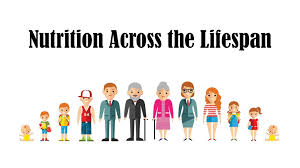 NUTR2005 Lifespan Nutrition Assignment-Laureate International University Australia.