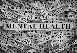 NSB204 Mental Health Assignment-Australian College Mental Health Nurses.