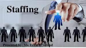 BSMH3023 Staffing Management Assignment-Malaysia.