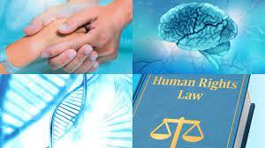JUST2004 Human Rights Law Essay-Minnesota University United States.