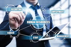 BUSM4589 Professional Human Resource Management Practices Assignment-RMIT University Australia.
