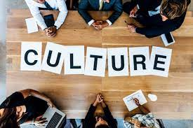 CCS101 Assessment 1 : Communicating For Cultural Safety - Think Education Australia.