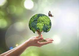 BSBSUS411 Implement & Monitor Environmentally Sustainable Task -US.